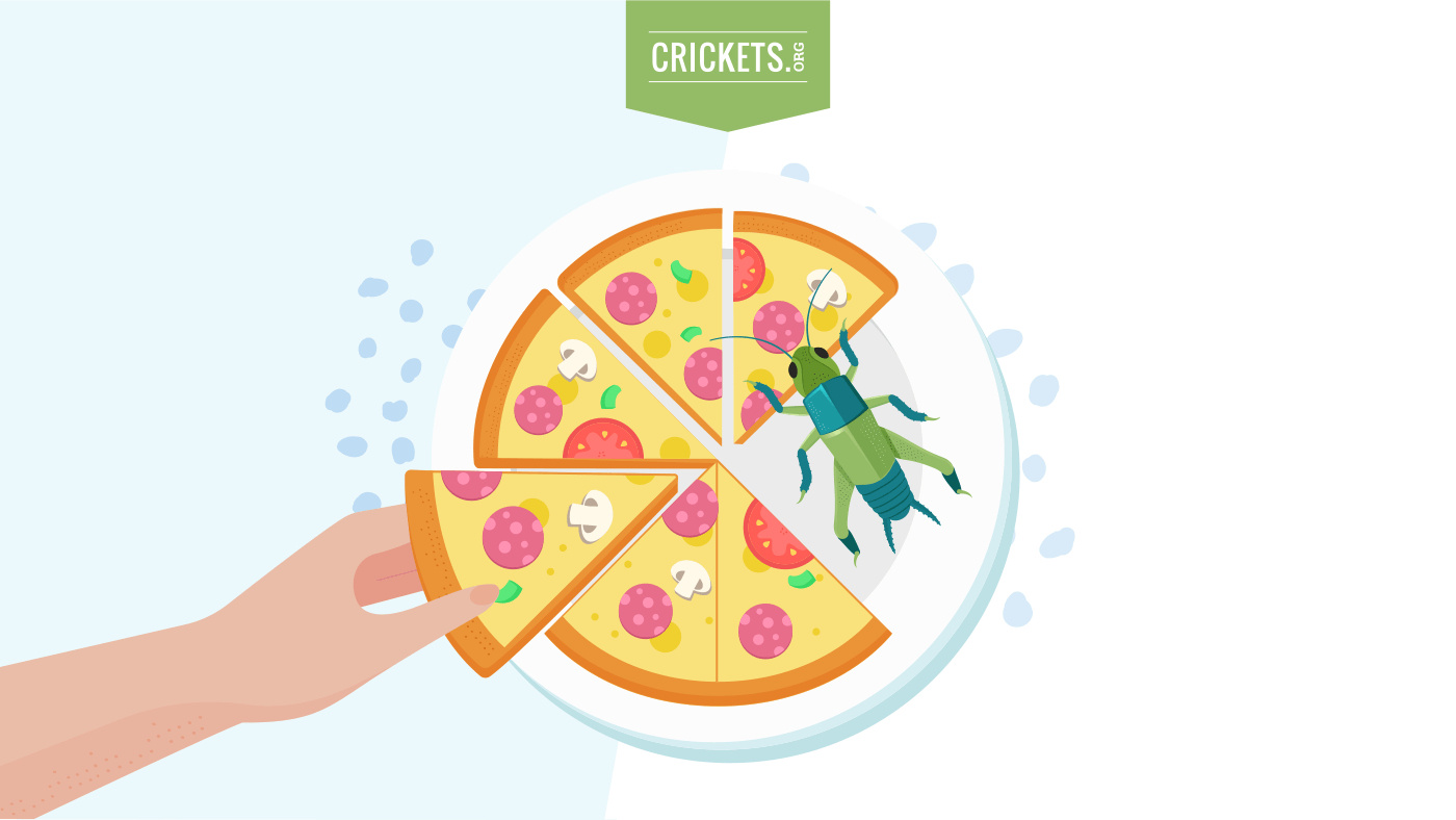 Cricket Pizza
