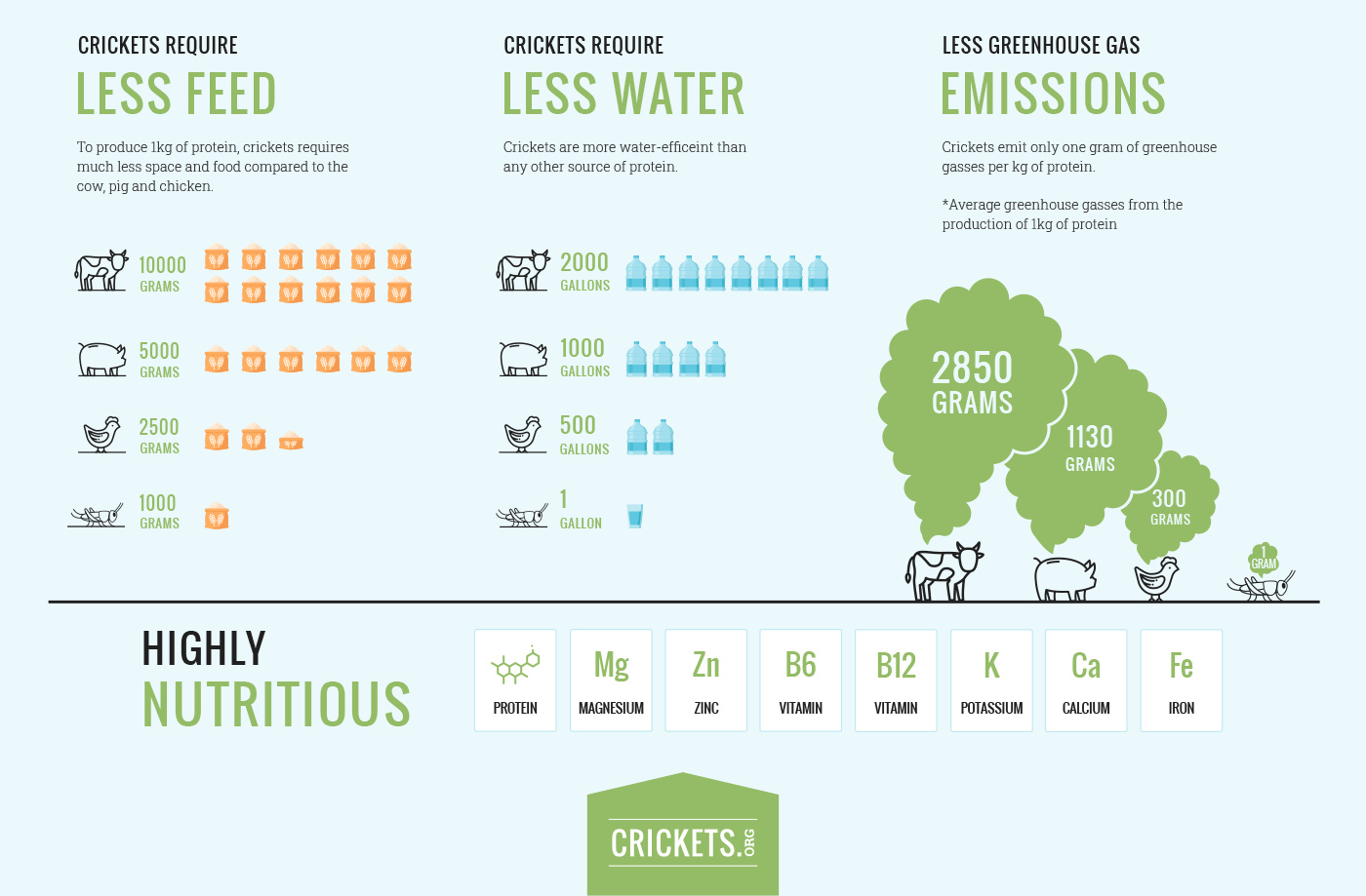 Crickets vs beef carbon footprint